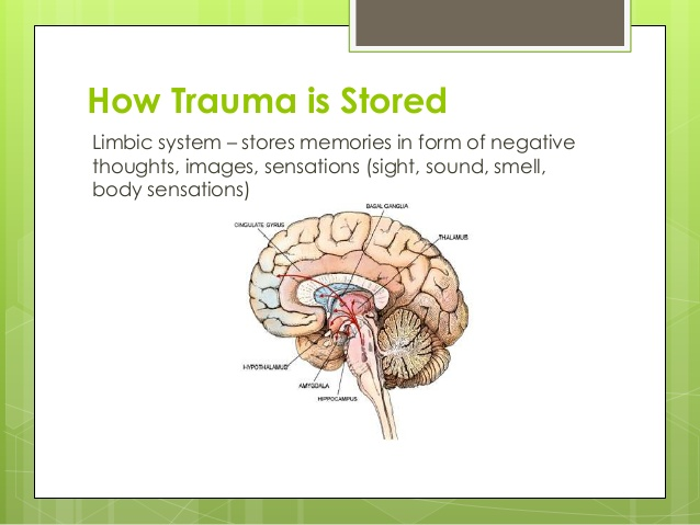 Prinsip 2 EMDR tentang ingatan traumatik. Gambar dari: http://image.slidesharecdn.com/understandingtraumaandtreatment-141107162755-conversion-gate01/95/understanding-trauma-and-how-to-treat-it-27-638.jpg?cb=1415377770